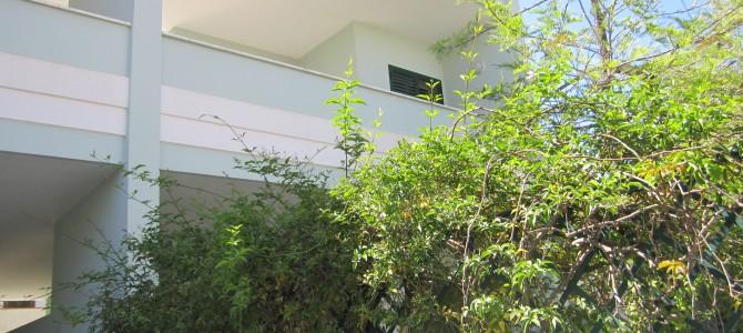 Complesso di 4 appartamenti trilocali da 6 posti letto in Baia Verde